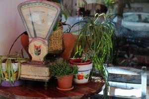 L'alquimista blog gastronomico Valencia